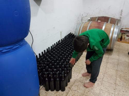 שורות של בקבוקים