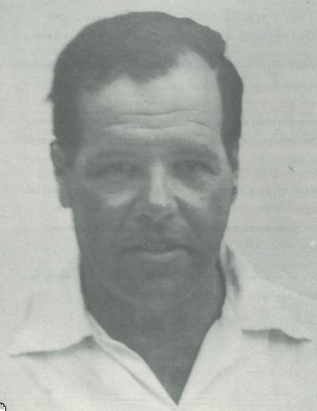 מיינץ דוד (ולטר)